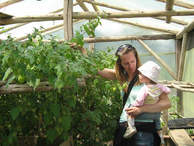 Landwirtschaftsprojekt in Ecuador