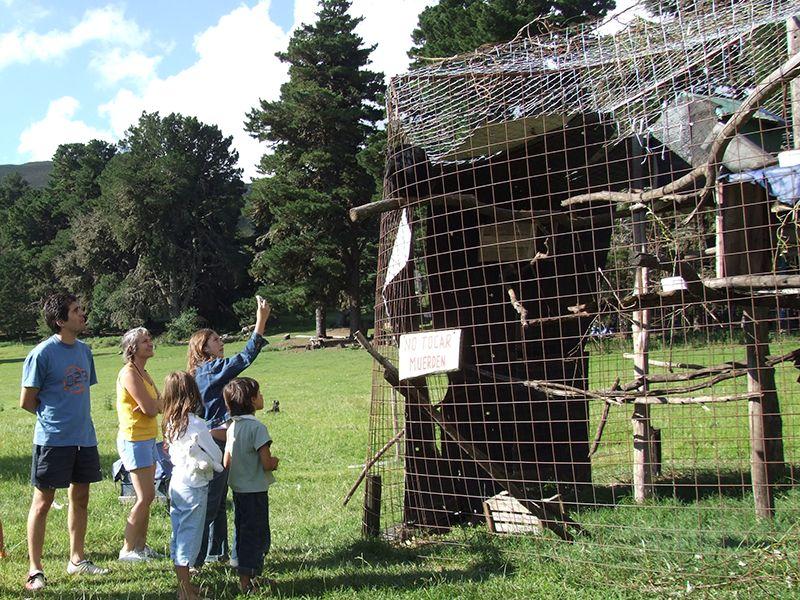 Gäste auf dem Affen-Gelände