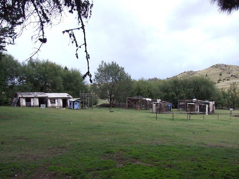 Das Gelände des Affen-Zentrums