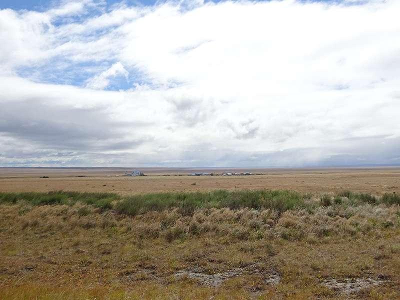 Steppe Patagoniens