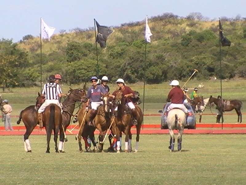 Polo-Event auf Polofarm