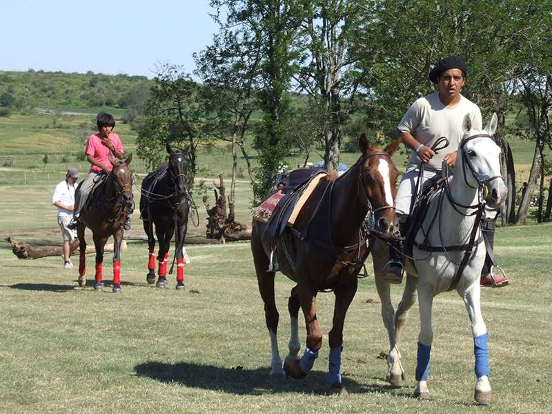 Polo Weekend Argentina