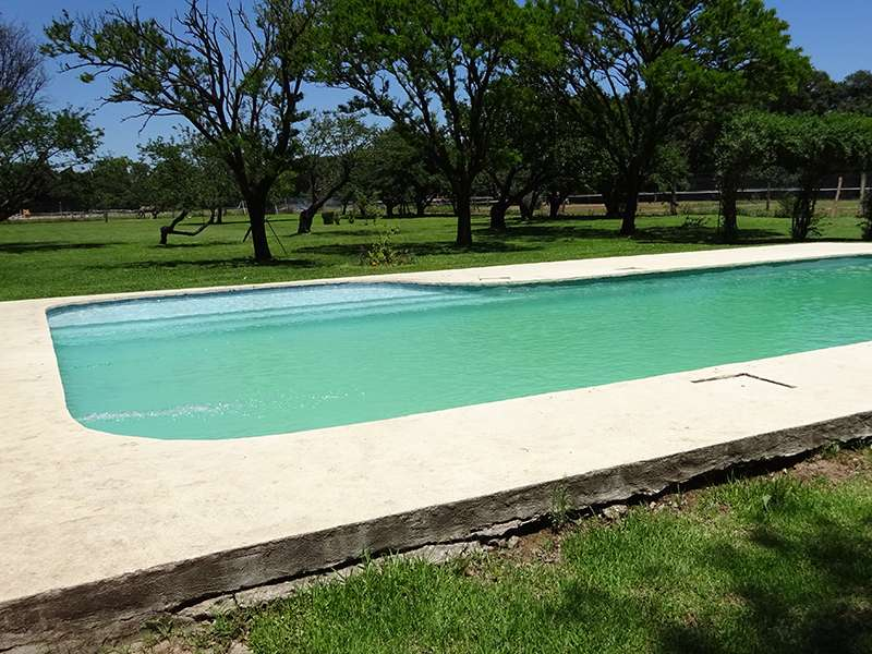 Swimming Pool Reitclub Haras