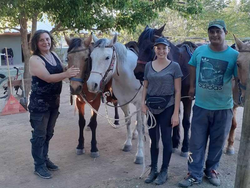 Pferde und Reiten fast täglich
