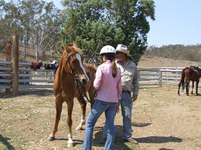 Horse training Australia