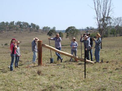 Ranchwork training