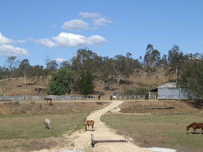 Gelände der Trainingsfarm