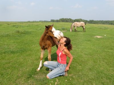 Farmstaynee with Horse