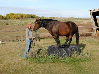 Manitoba Canada Girl with Horse