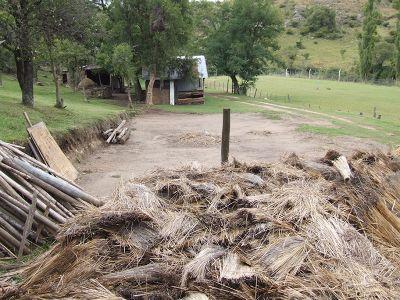 Farm in Südchile