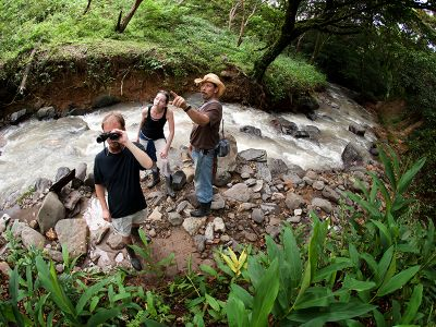 Jungle Tour Costa Rica