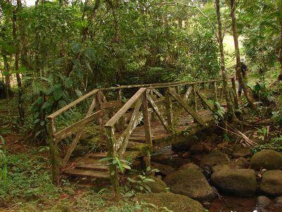 Wooden Bridge National Park Costa Rica