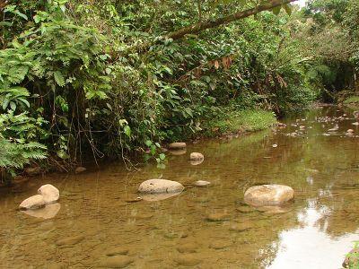 National Park in Costa Rica