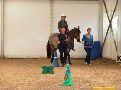 Indoor horse riding therapy Cape Town