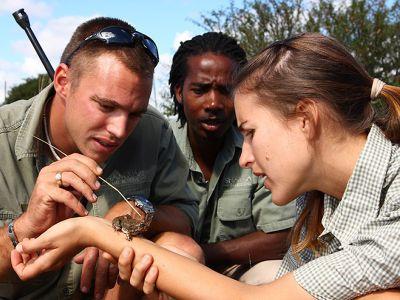 Park ranger explains fauna to volunteer