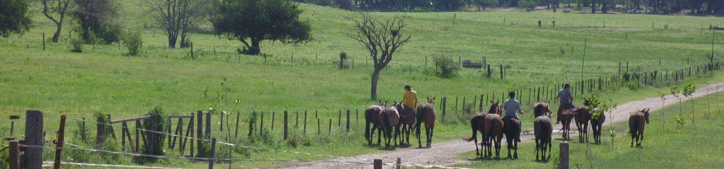 Argentinien Poloranch Polofarm Gelände