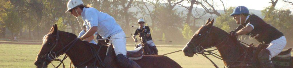 Argentinien Polospiel Pferde Action