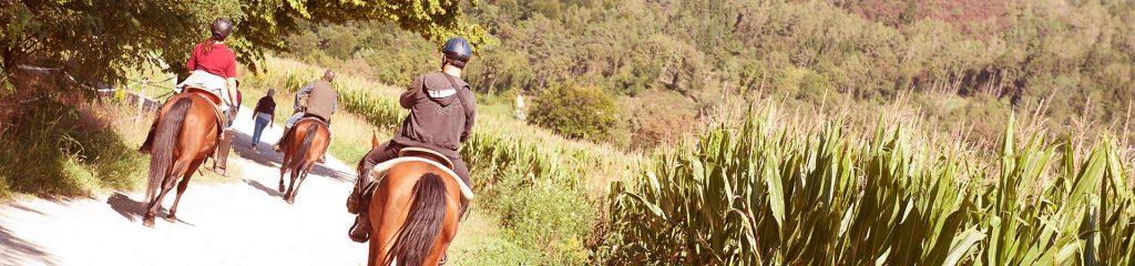 Canada Manitoba Ranchstay Natural Horsemanship Ausritt