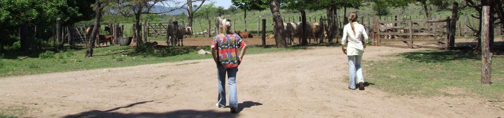 Chile Farm Rinder Farmgirls