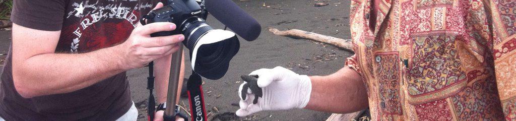 Costa Rica Wildlife Marine Turtle Filmteam