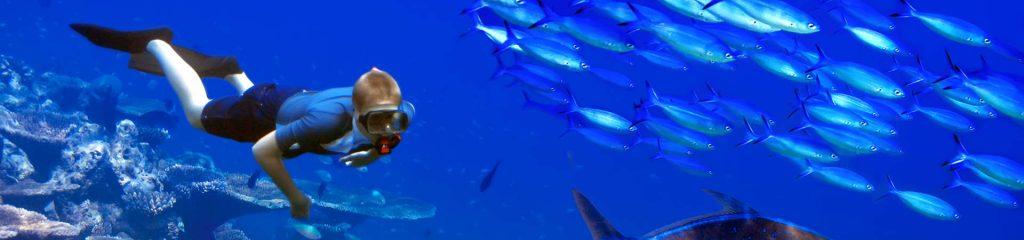Mauritius Diving Diver