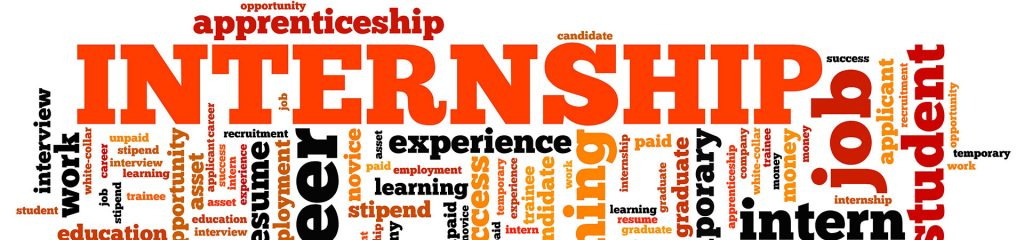 Commercial internships in New Zealand