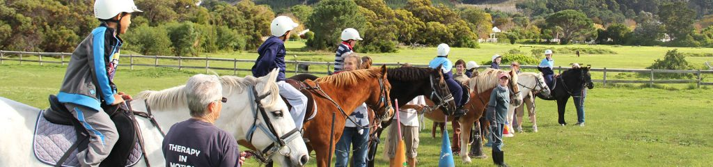 South Africa Cape Town Equine therapy group