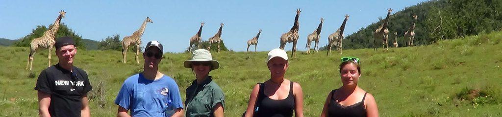 South Africa Volunteers Giraffes
